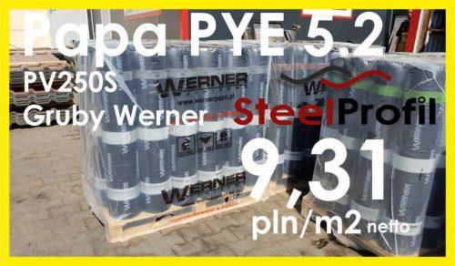 PAPA SBS WERNER 5.2
